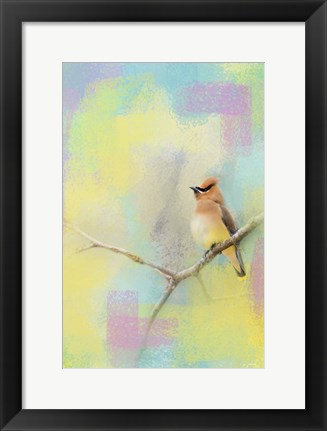 Framed Song Of The Waxwing Print