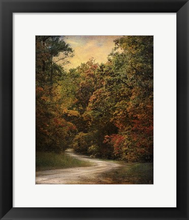 Framed Autumn Forest 1 Print