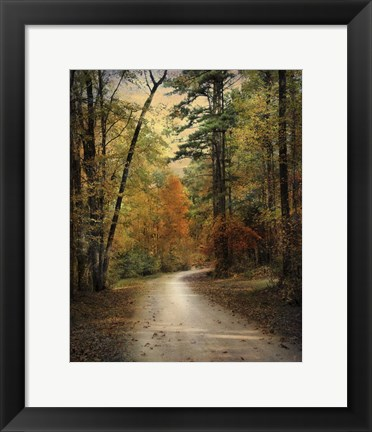 Framed Autumn Forest 4 Print