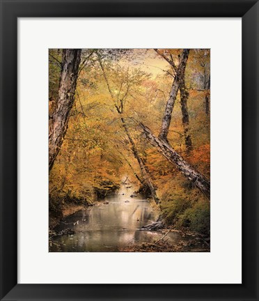 Framed Autumn Riches 1 Print