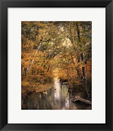 Framed Autumn Riches 2 Print