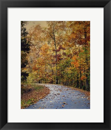 Framed Autumn Splash Print