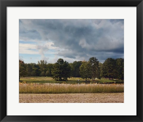 Framed Behind Natures Fence Print