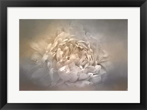 Framed Blushing Silver And Gold Peony Print