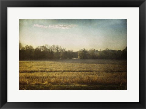 Framed Break In The Trees Print