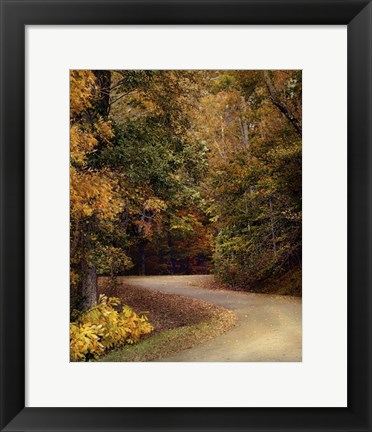 Framed Colorful Journey Print