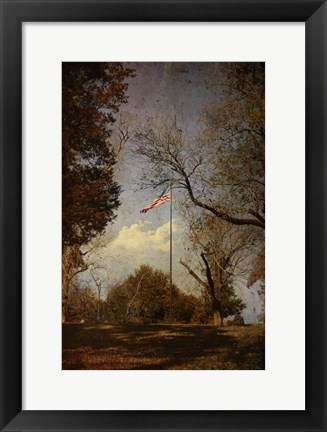 Framed I Pledge Allegiance Print
