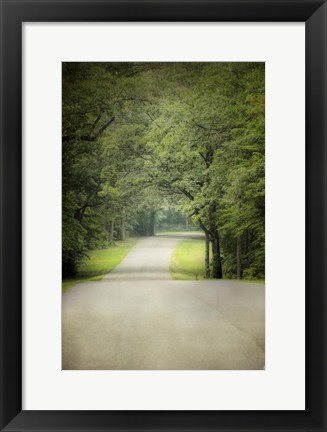 Framed Summer Morning Stroll Print