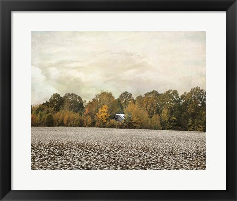 Framed Old Cotton Barn Print