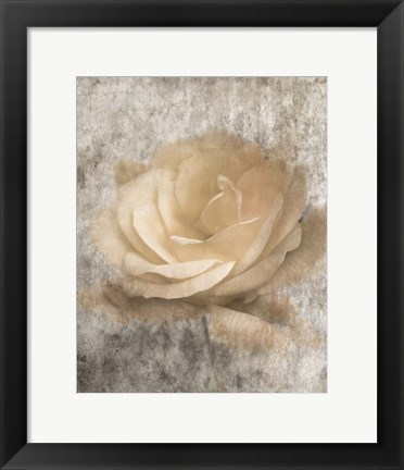 Framed Vintage Rose 3 Print
