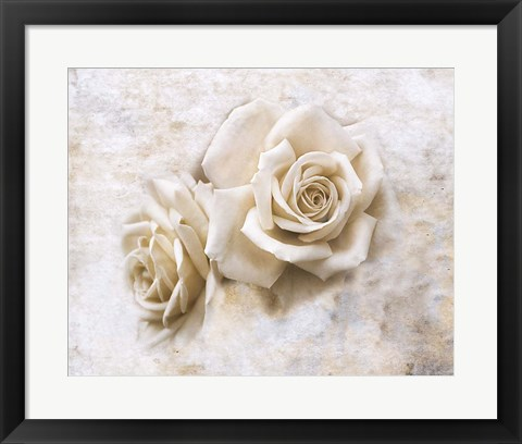 Framed Vintage Rose 4 Print