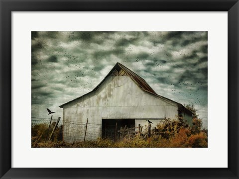 Framed Where The Crows Roost In Autumn Print