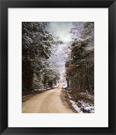Framed Winter Paradise Print