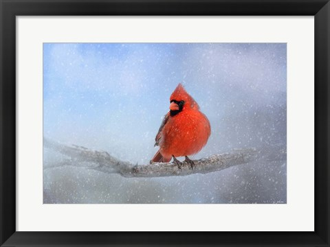 Framed Cardinal In The Snow Print