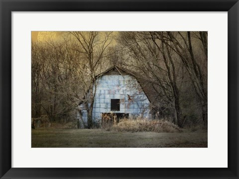 Framed Redtail At The Blue Barn Print