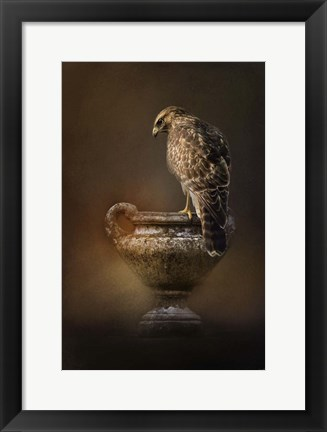 Framed Sacred Moment Print