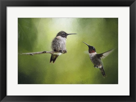 Framed Wake Up Call Hummingbirds Print