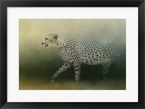 Framed Cheetah On The Prowl Print