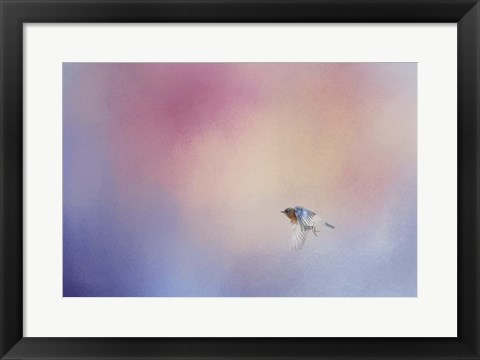Framed I Wish I Could Fly - Bluebird 1 Print