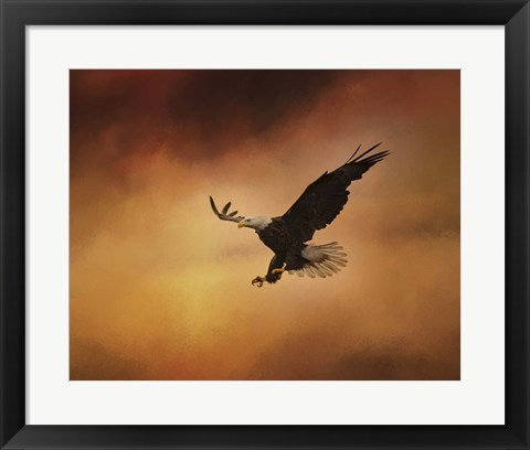 Framed No Fear Print