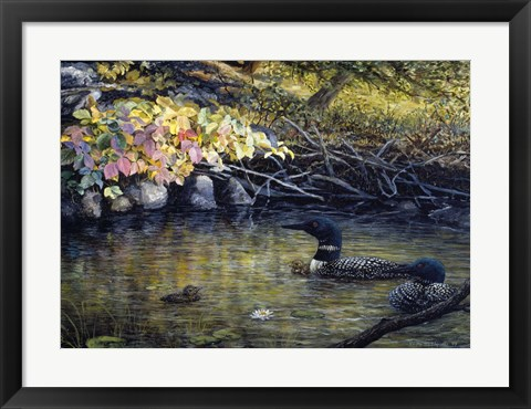 Framed Peaceful Reflections Print