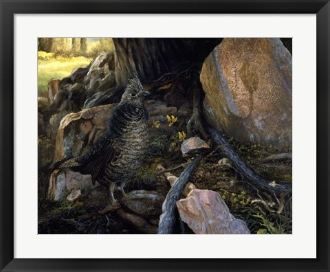 Framed Ruffed Grouse & Trout Lilies Print