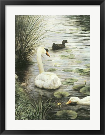 Framed In The Pond Print