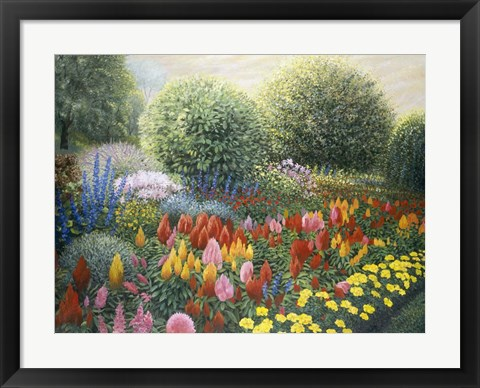 Framed Ornamental Garden Print