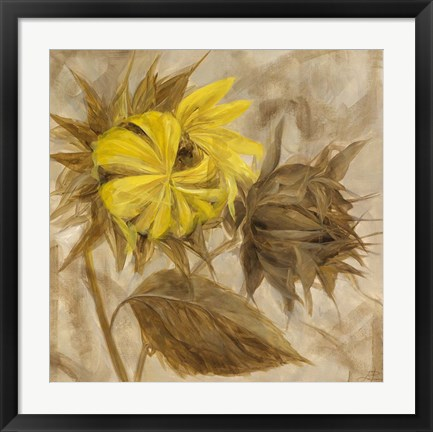 Framed Sunflower IV Print