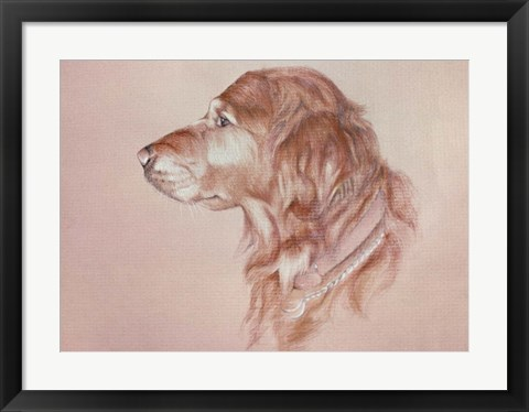 Framed Dog Eight Print