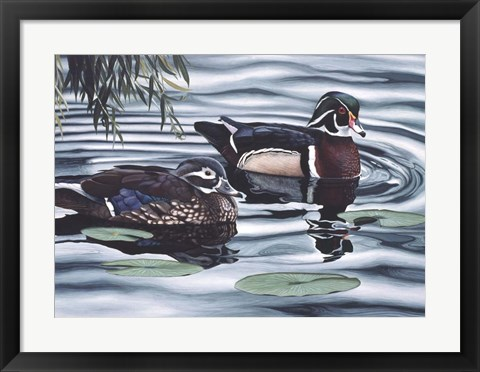 Framed Pair of Ducks Print
