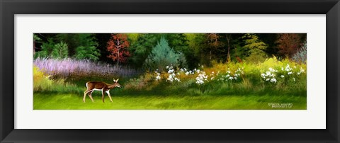 Framed Doe In Spring Glade Print