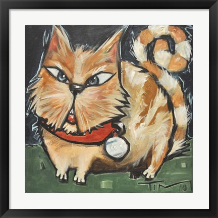 Framed Square Cat Print