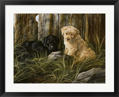 Framed Lab Pup Pair Print
