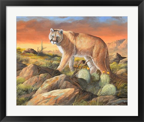 Framed Sonoran King Print