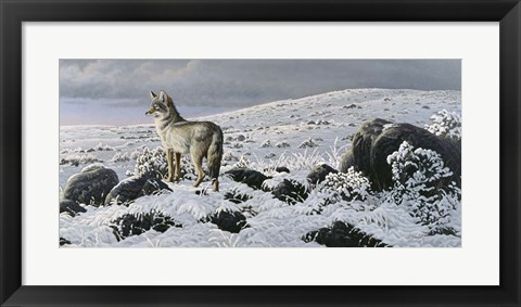 Framed Open Country - Coyote Print