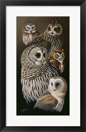 Framed Eyes Of The Night - Owls Print
