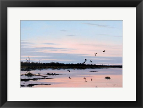 Framed Sunset March Black Ducks Print