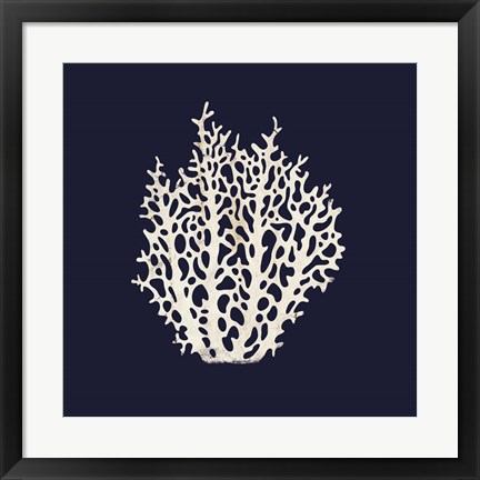 Framed Contemporary Coastal Coral Print