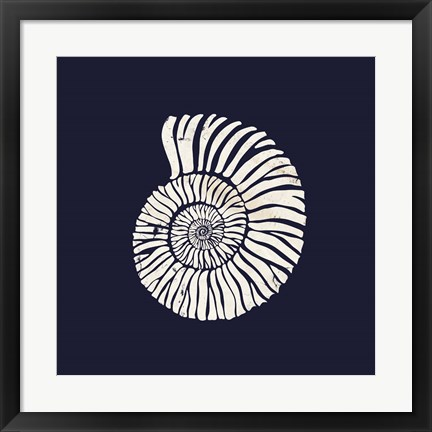 Framed Contemporary Coastal Shell II Print