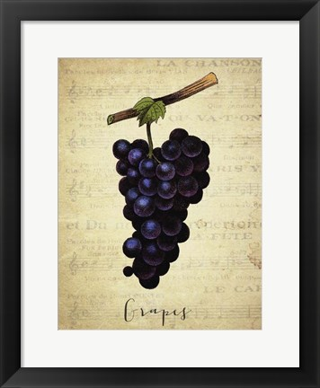 Framed Grapes 1 Print