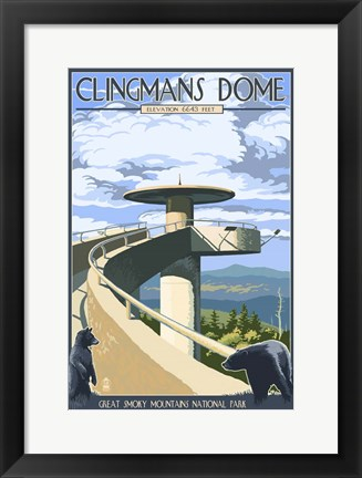 Framed Clingman's Cove Print