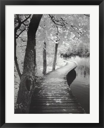 Framed Take A Walk Print
