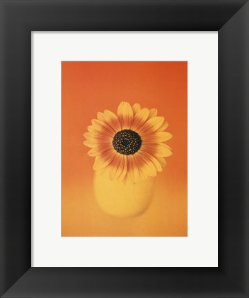 Framed Single Sunflower Print