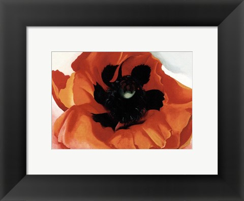 Framed Poppy Print