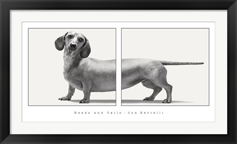 Framed Heads and Tails Print
