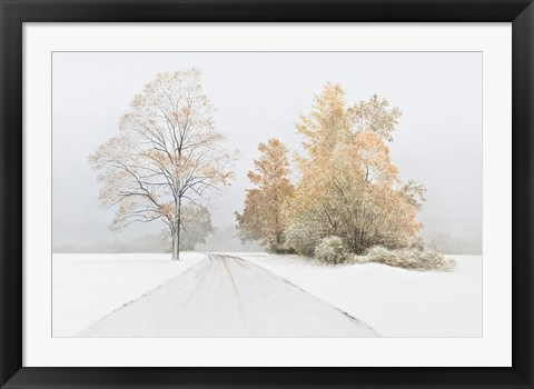 Framed Autumn Snowfall Print