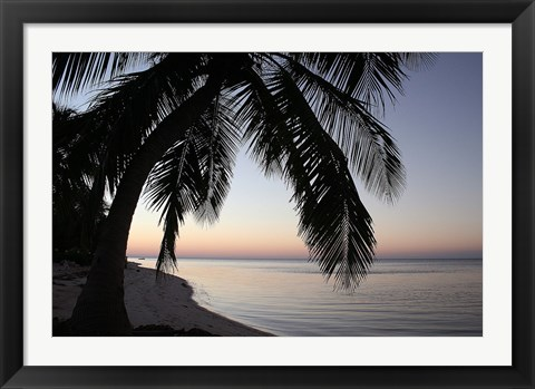 Framed Palm Tree Sunset Print