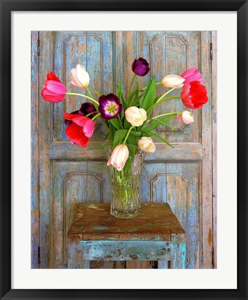 Framed Tulips, Mexico Print