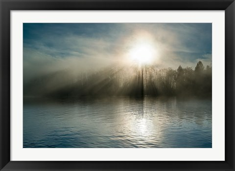 Framed Rising above the Water Print